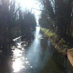 Gravelness Canal Paddy 69